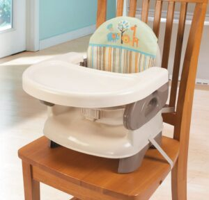 Summer Infant Deluxe Comfort Booster Seat