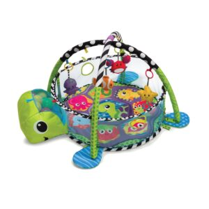 Grow-with-me Infantino Activity Gym and Ball Pit