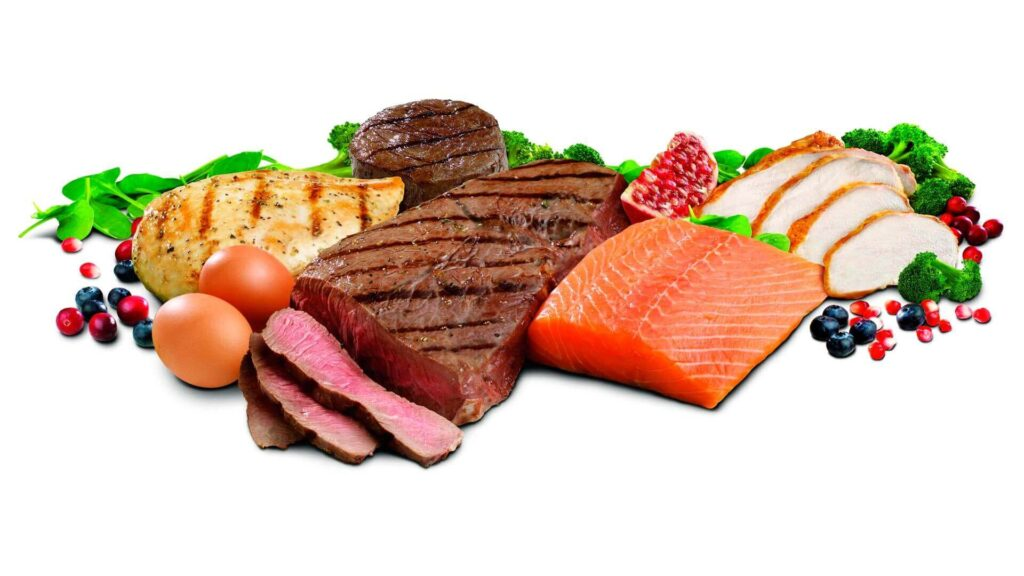 eat protein to lose belly fat