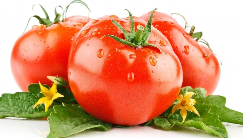 Tomatoes during pregnancy
