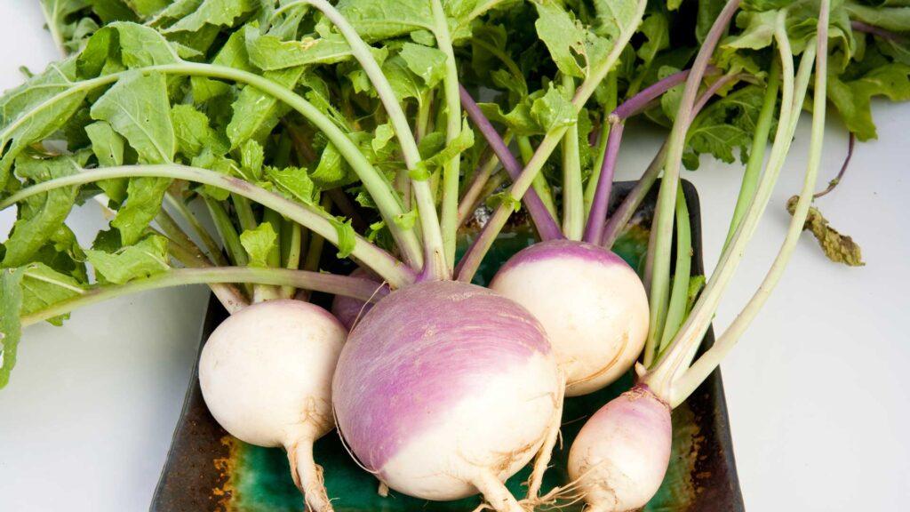 turnip benefits in pregnancy