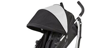 Best Convenience Stroller Summer Infant 3D Zyre
