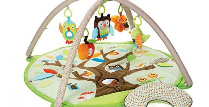 Skip Hop Baby Treetop Friends Activity Gym