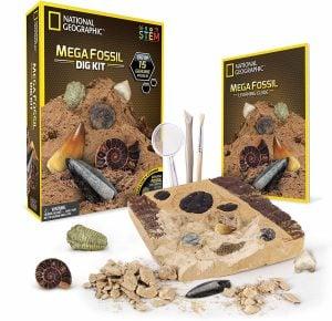 Mega Fossil Mine- Dig Up 15 Real Fossils
